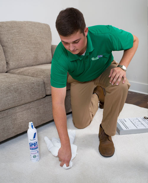Chem-Dry of Napa Valley Technician Removes Carpet Stain in Napa CA